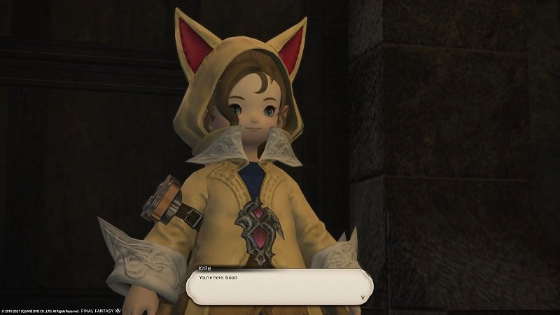 Final Fantasy XIV Game - Krille You Are Here - Good