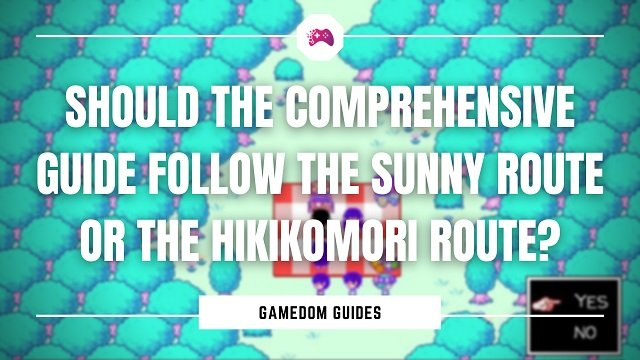 Should The Comprehensive Guide Follow The Sunny Route Or The Hikikomori Route