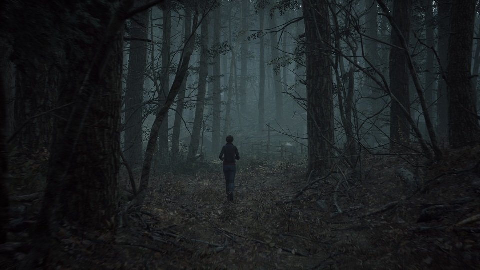 The Medium Game Walking In The Forest