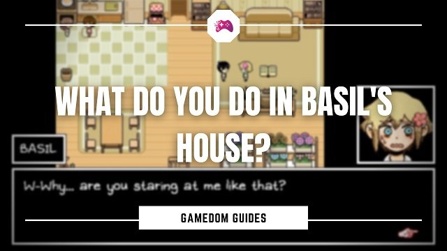 What Do You Do In Basil's House