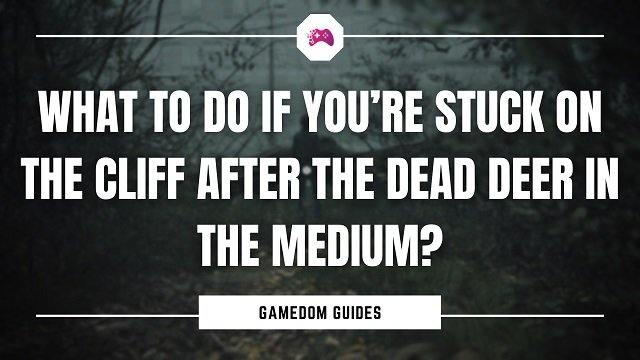 What To Do If You're Stuck On The Cliff After The Dead Deer In The Medium