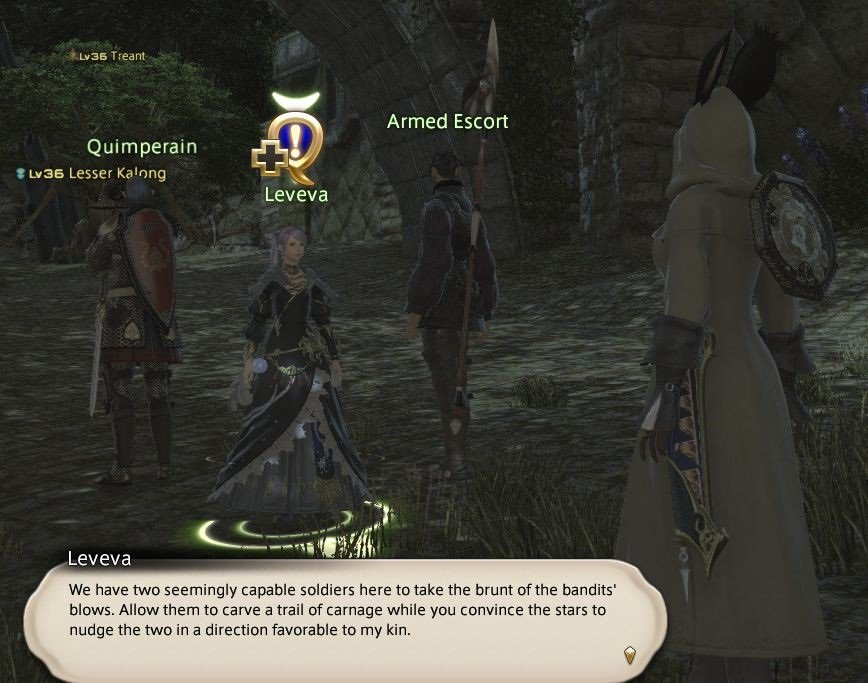 Final Fantasy XIV Fortune Favors The Bole - Leveva - We have two seemingly capable soldiers here