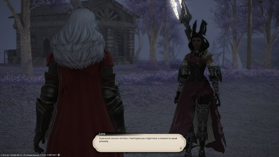 Final_Fantasy XIV - Lyna - A personal concern of mine I had hoped you might have a moment